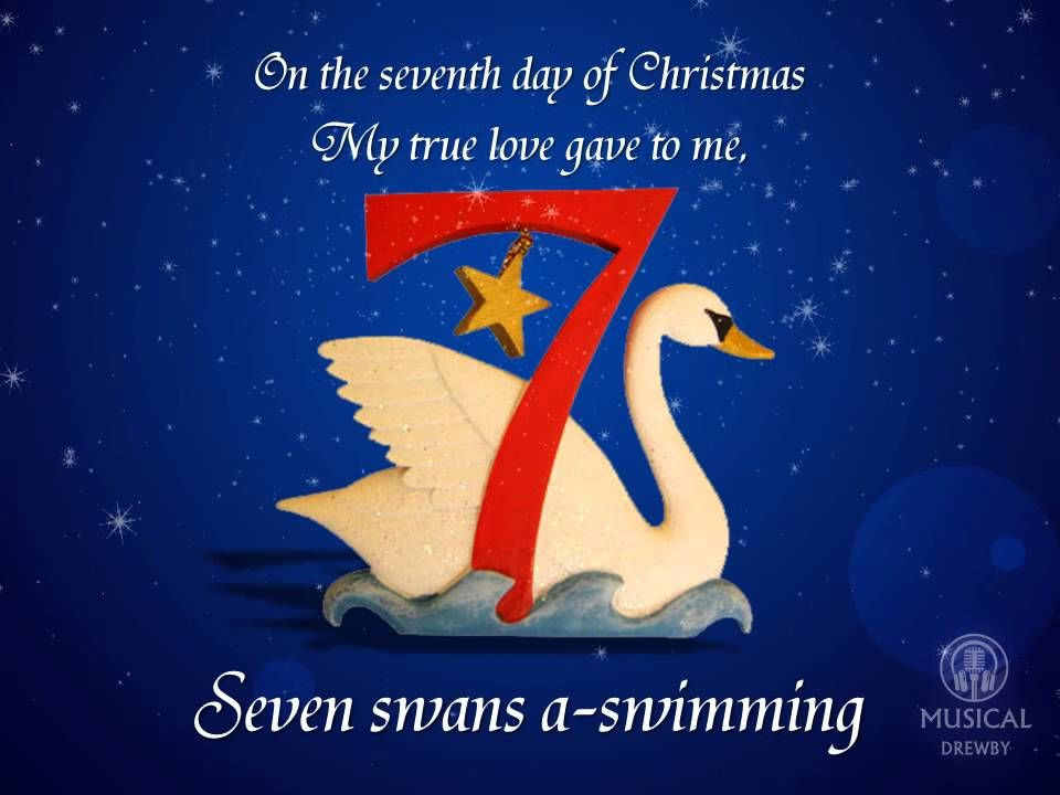 The Twelve Days Of Christmas (Instrumental)