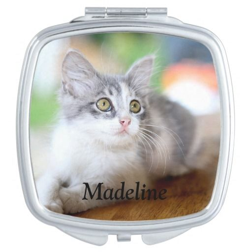 Cute Grey And White Kitten Compact Mirror Zazzle Com Kitten Photos White Kittens Grey White Kitten