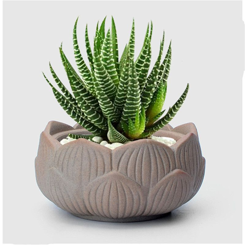 Small Lotus Ceramic Garden Supplies Pottery Mini Flower Pot Planter Pots Decorative Terracotta Succulents In Planters From Home