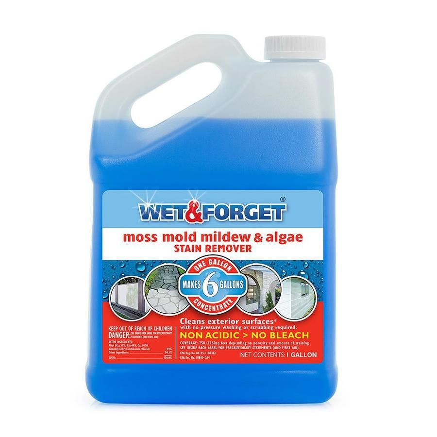 Wet And Forget 128 Fl Oz Liquid Mold Remover At Lowes Com Mildew Stains Cleaning House Cleaning Tips