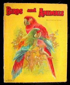 """Old Book: Birds and Animals.     .  Springfield, Mass: McLoughlin Bros. Inc, no MB, thus 1920-1929, yellow glazed paper mounted on linen with gorgeous red and green parrots and red titles, colourful pheasant-like birds on the back, four large chromolithos, a rooster, a cow, a donkey, and a dog (Newfoundland), on the reverse """"linen"""" side sepia pictures and little poems, 10x12."""