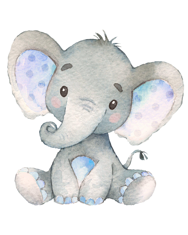 Pin de sanjuana h l en baby shower elefantes beb - Fotos de elefantes bebes ...