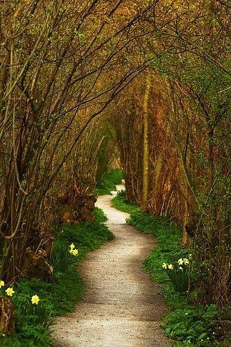 secret path in secret garden in netherlands