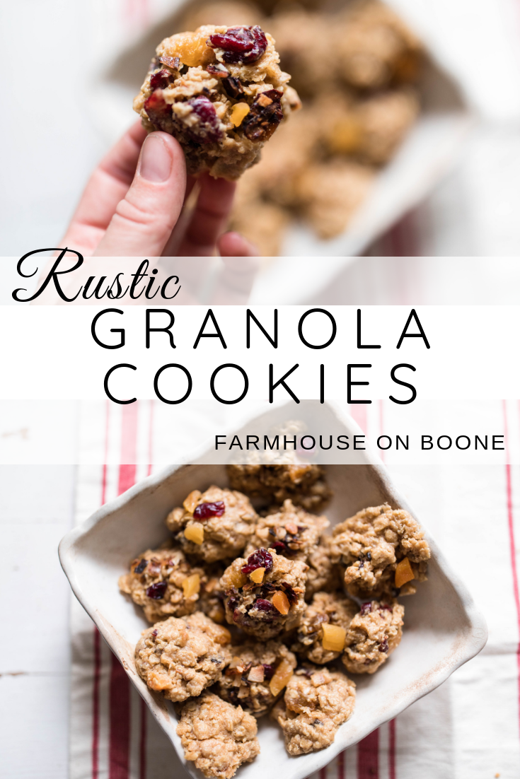Rustic Granola Cookies Recipe Granola cookies
