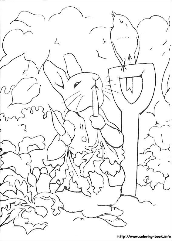 Eet Wortel Rabbit Coloring Pages Line Drawing 567x794 Kids Rabbit Color Page