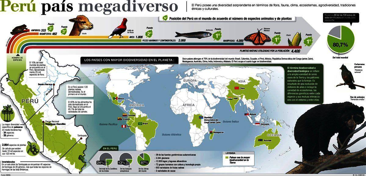 Peru Pais Megadiverso Pesquisa Google Spanish Posters Spanish Data Visualization