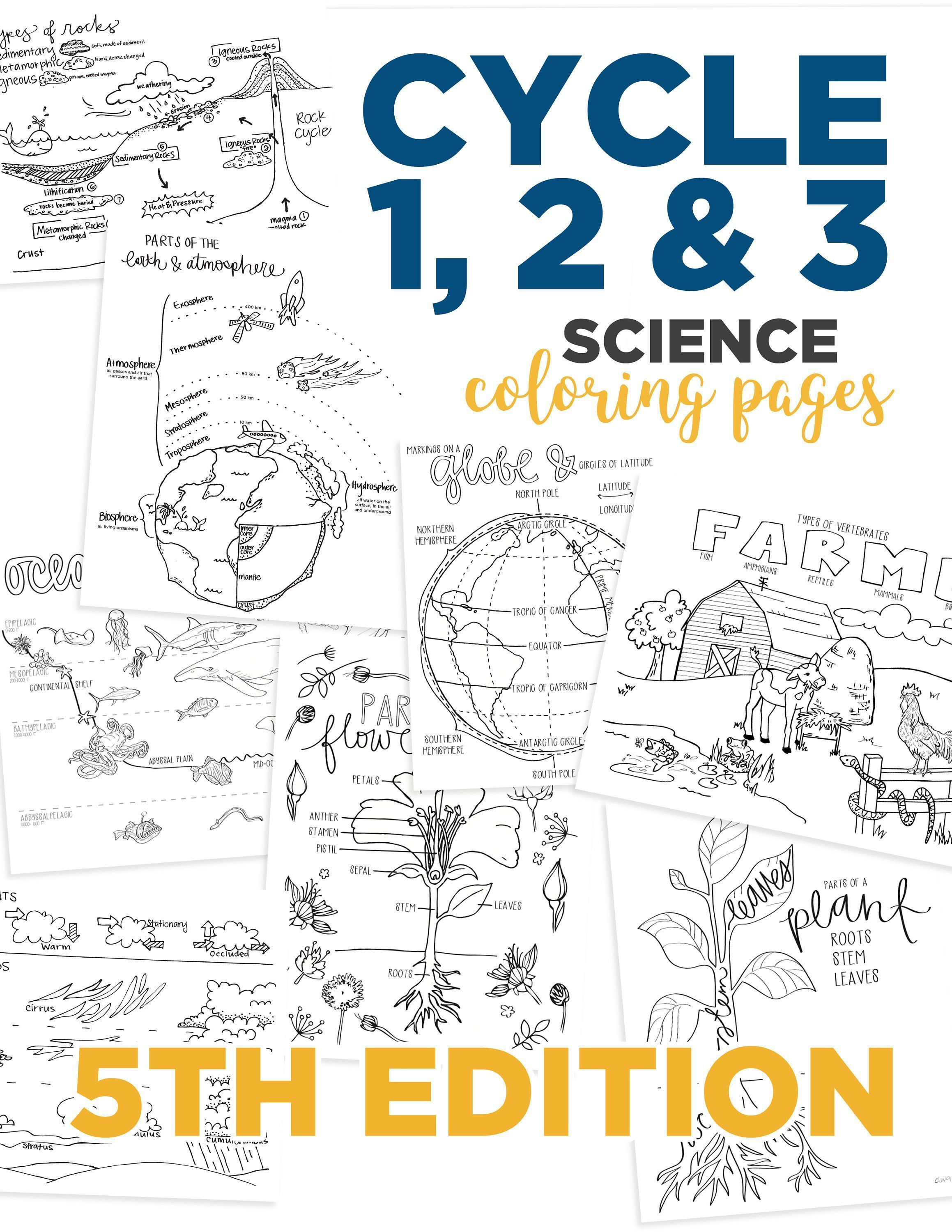 All 3 Science Cycles Coloring Pages 5th Edition Etsy In 2020 Classical Conversations Classical Conversations Homeschool Classical Conversations Foundations [ 3000 x 2318 Pixel ]