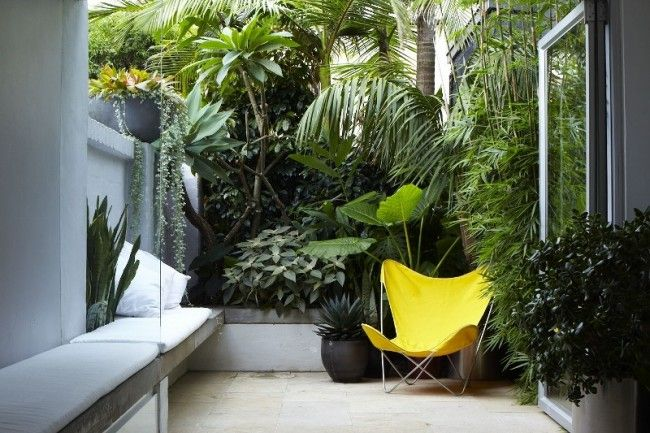 kleinen Innenhof Holz Terrasse Boden Belag Bambus Sichtschutz