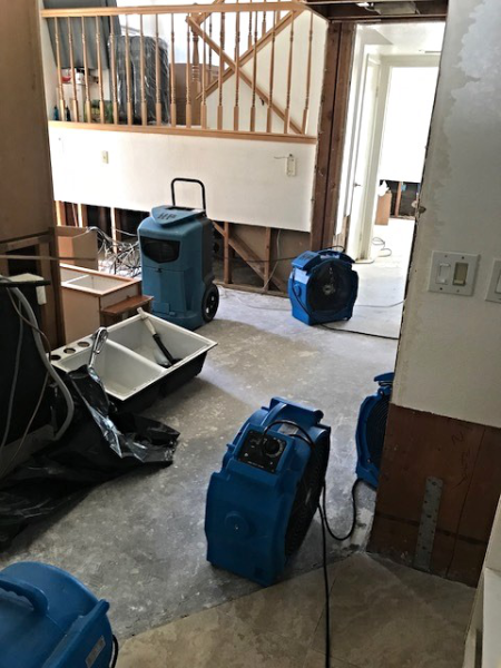 Pin on Black Diamond Carpet Cleaning and Water Damage
