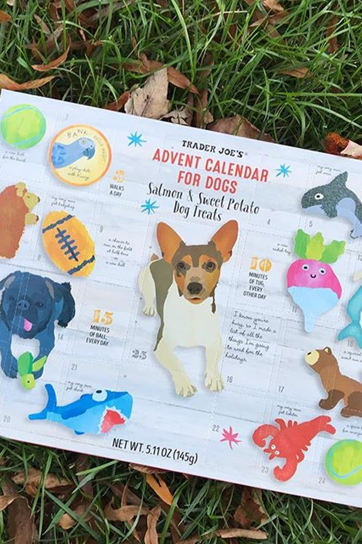 Trader Joe's Advent Calendars For Dogs Are Back in Stock