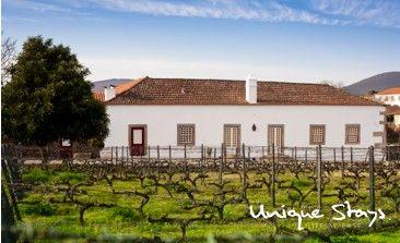 The Manor & the vineyard