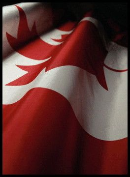 Canadian Flag~ I Love My Home!!!!!!!!!