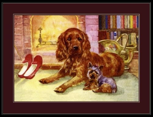 English-Print-Picture-Cocker-Spaniel-Yorkshire-Terrier-Dog-Vintage-Poster-Art