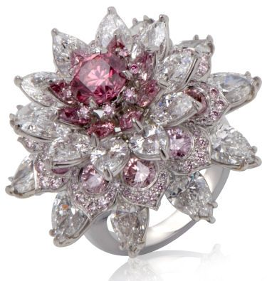 Argyle Pink Diamond Jewelry Outlet Opens In India The Shalimar