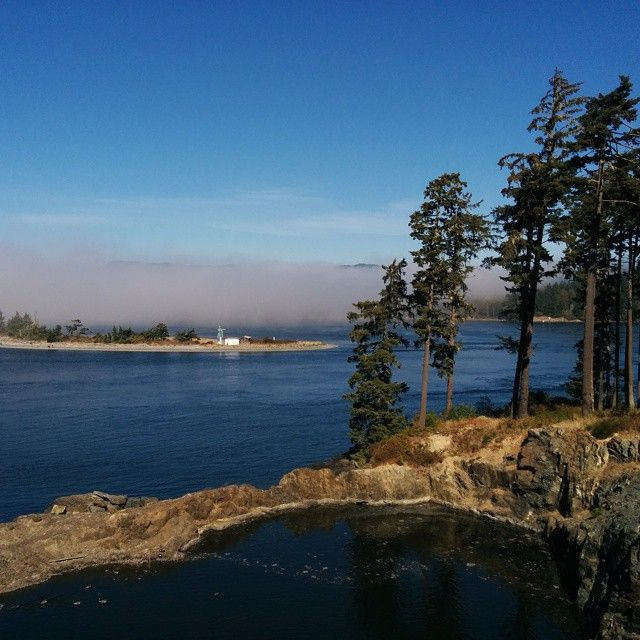 Live Well and Breathe: Beachcombers / September 8, 2014
