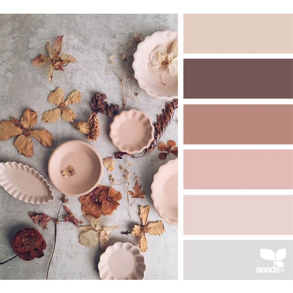 Design Seeds For All Who Color Beige Color Palette Color Schemes Design Seeds