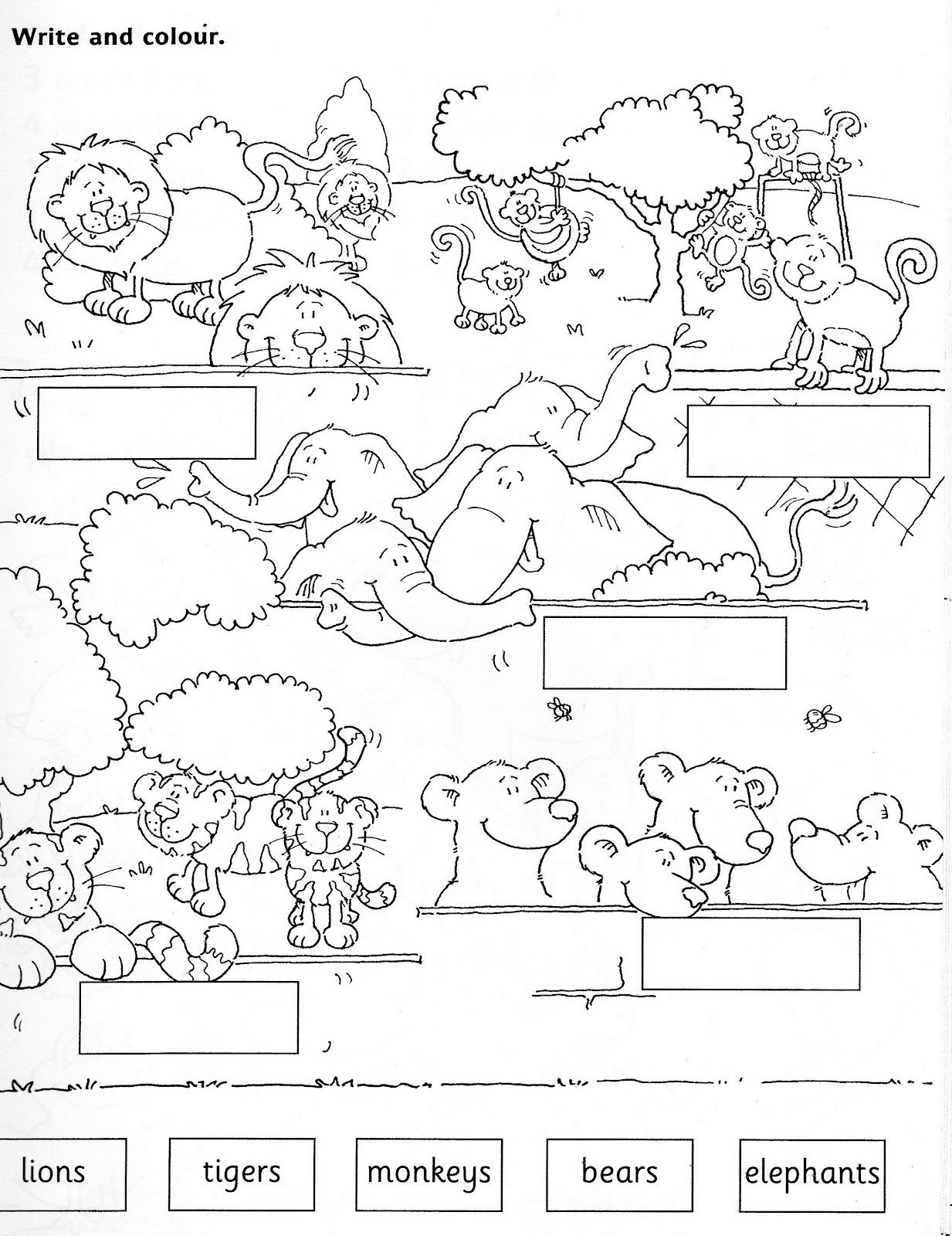 zoo worksheets Jugando en Ingl s ZOO ANIMALS WORKSHEET – Animal Worksheets