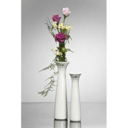 Photo of Vases & flower vases