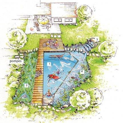 Esquema bio piscina casas de campo playa swimming for Bio piscina