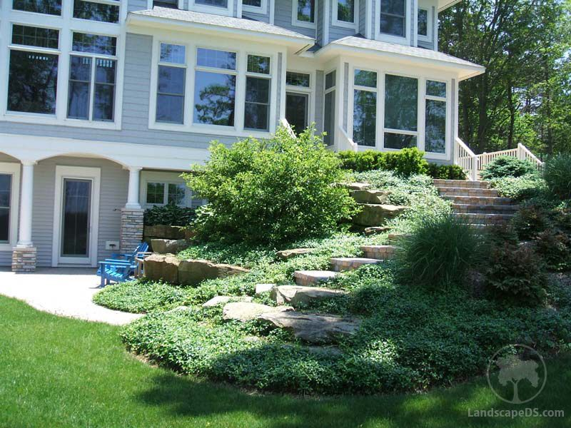 like vegetation by steps