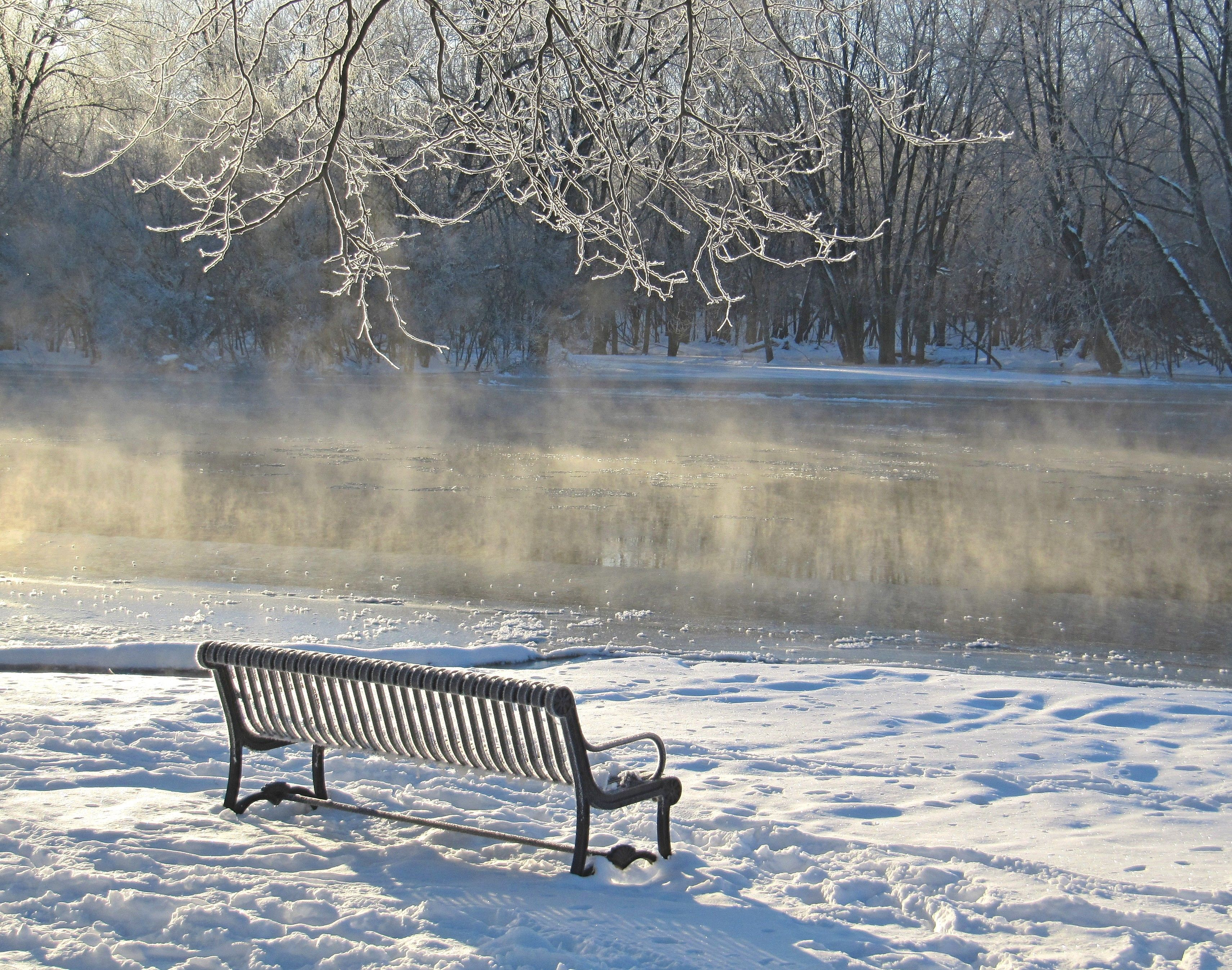 Fabulous Park Bench Morning After Ice Storm South End Park West Ibusinesslaw Wood Chair Design Ideas Ibusinesslaworg