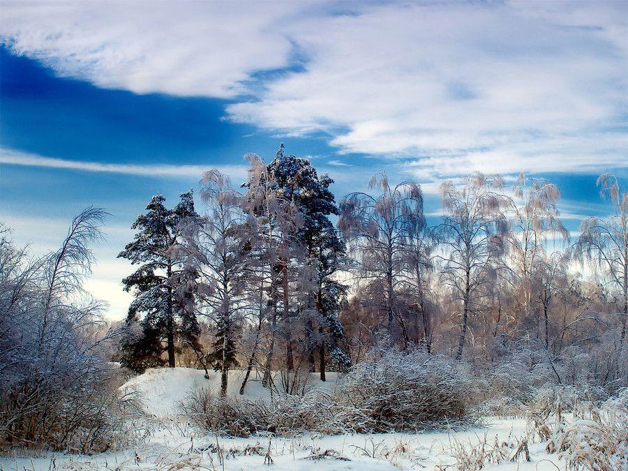 Winter by Алексей  Фомин on 500px