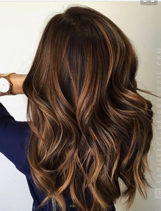 Long warm brown hair with caramel (level 7) highlight ...