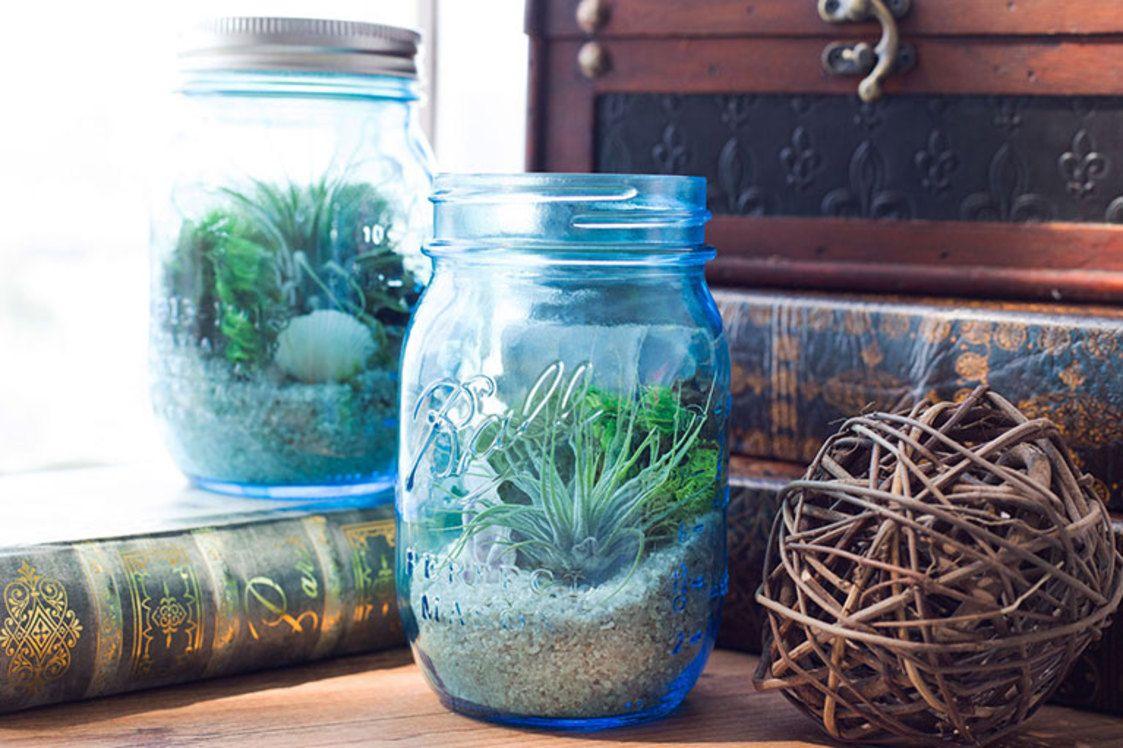 Diy mason jar aquarium darby smart decor dream home