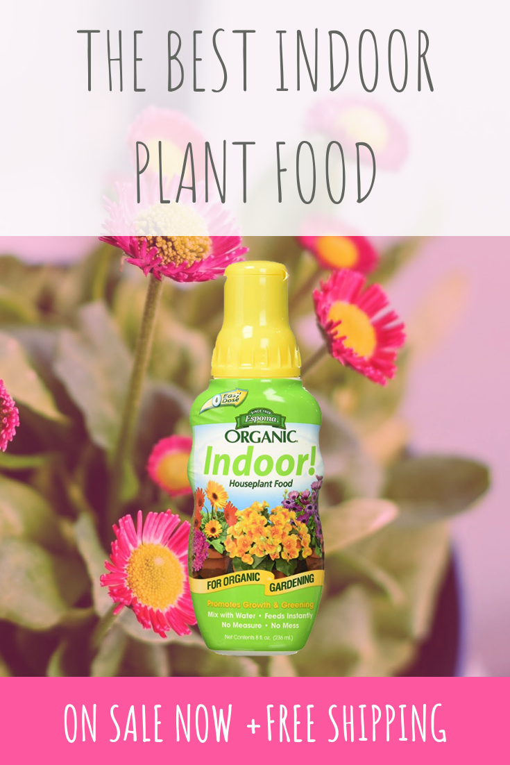 SALE! Our favorite indoor plant product is 10 OFF + FREE