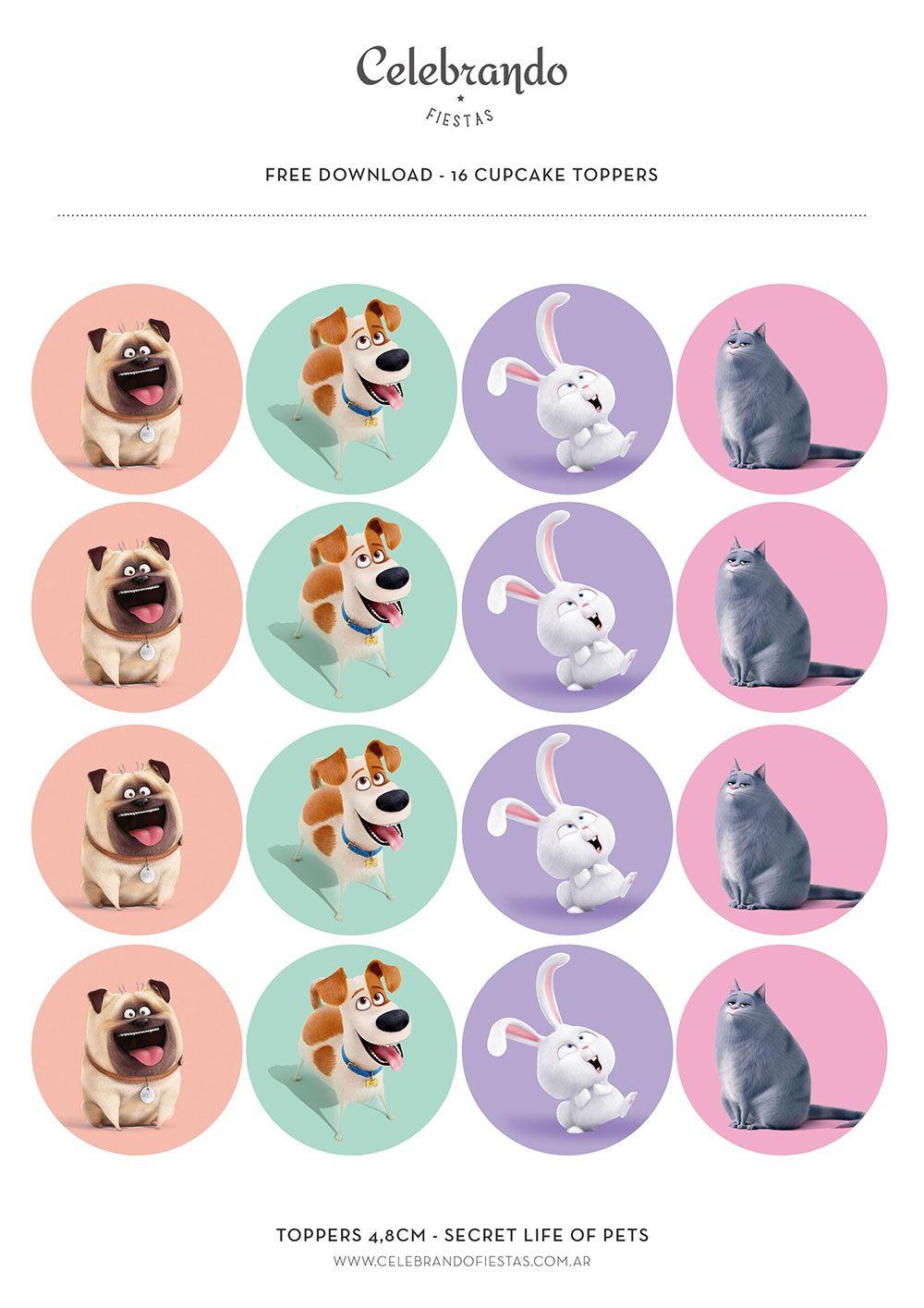 La Vida Secreta De Tus Mascotas Secret Life Of Pets Mascotas La Vida Secreta De Tus Mascotas Animal Doméstico