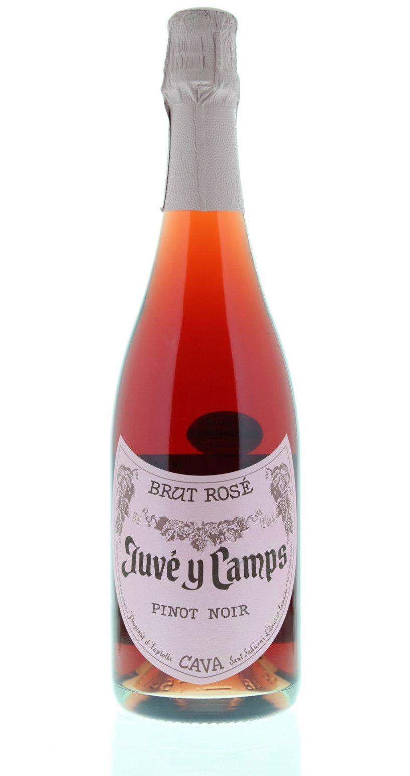 Juve Y Camps Pinot Noir Brut Rose Cava Sparkling Wine Sparkling Wine Brands Sparkling Wine