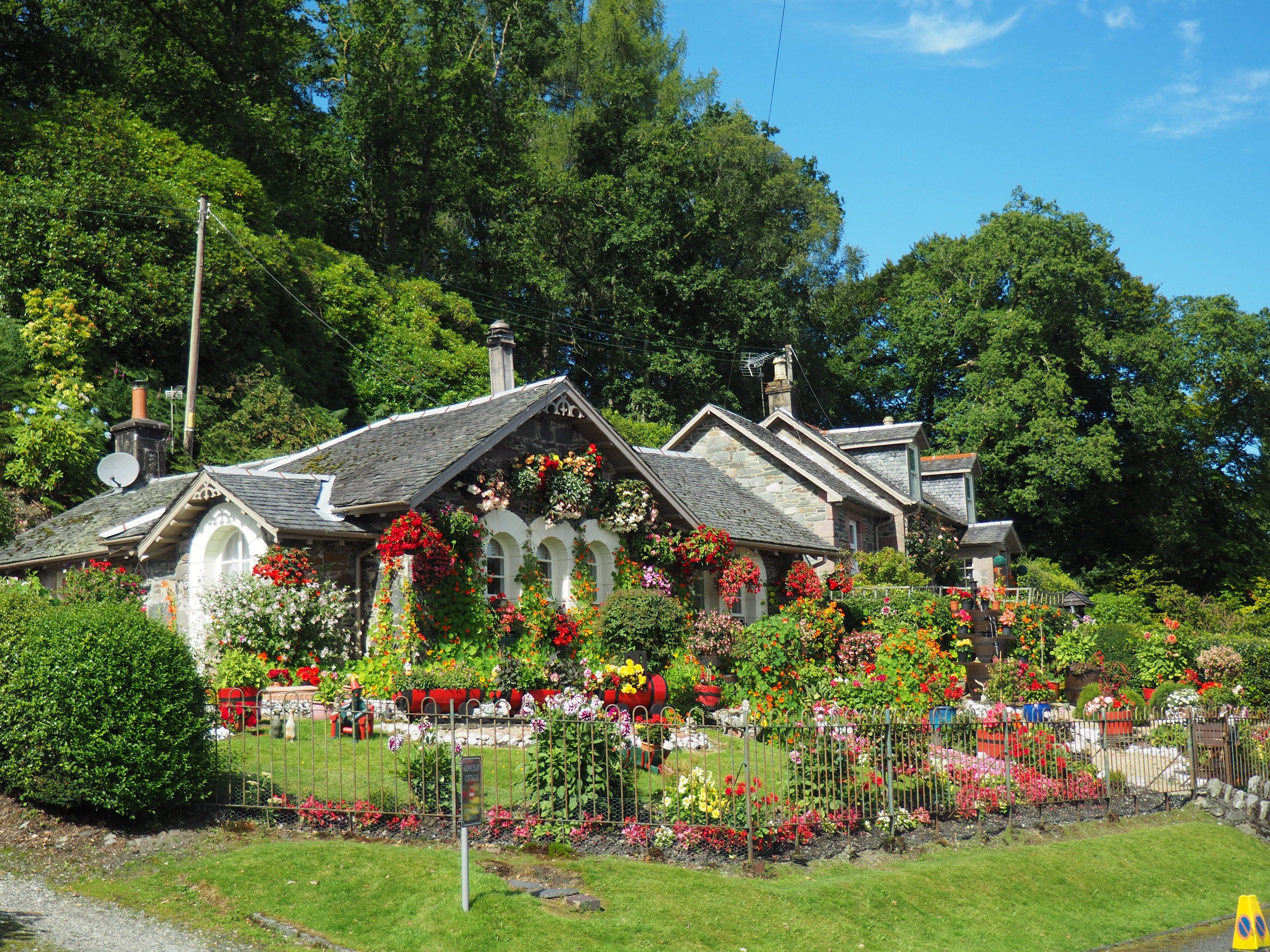 Garden Cottage Garden Design Companion Planting Garden Photography