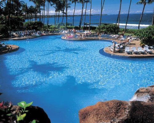 I've been swimming here! Hyatt Regency Maui Resort and Spa