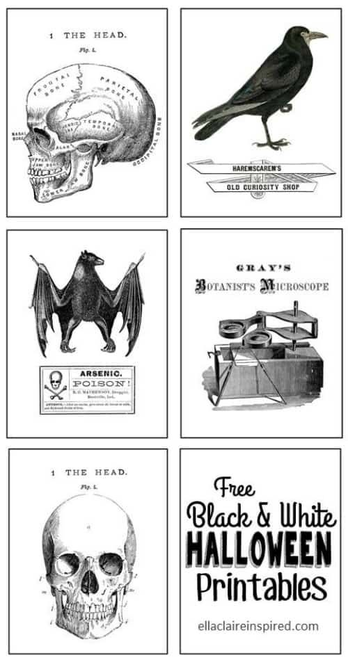 31(plus) Creative Free Halloween Printables - Halloween printables free, Halloween prints, Free halloween, Halloween graphics, Halloween printables, Halloween freebie - 31+ creative Free Halloween Printables  Ideas for Halloween class parties, activities, gifts, decorations and more!