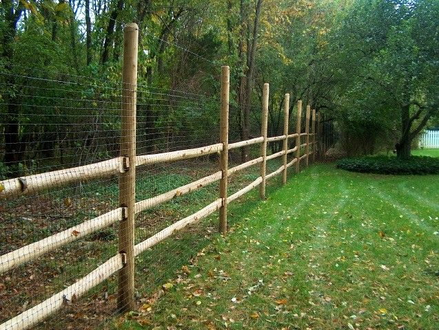 Merveilleux Deer Fencing On Wood Posts
