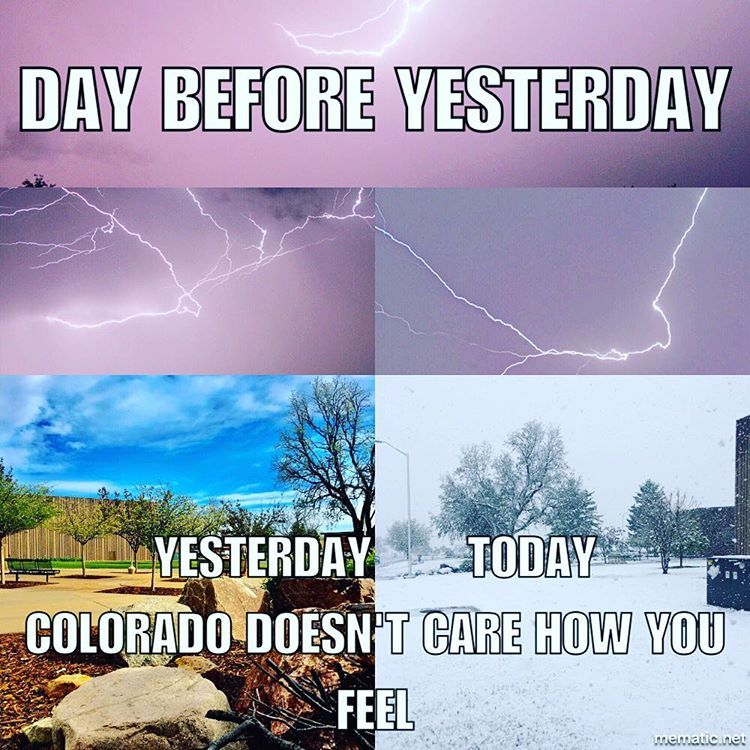 Better Snow Picture From Today Colorado Weather Memes Funny Colorado Memes Weather Memes Classic Memes