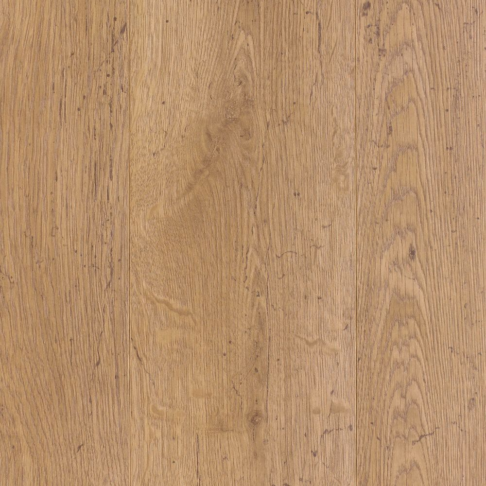 Laminate Flooring 12mm Thick Part - 50: Somerton II 12mm Thick Horsetail Oak Laminate Flooring (16.22 Sq. Ft. / Case