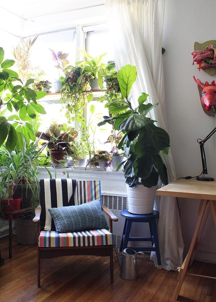 Plants! | apartment | Pinterest | Diy design, Design design and ...