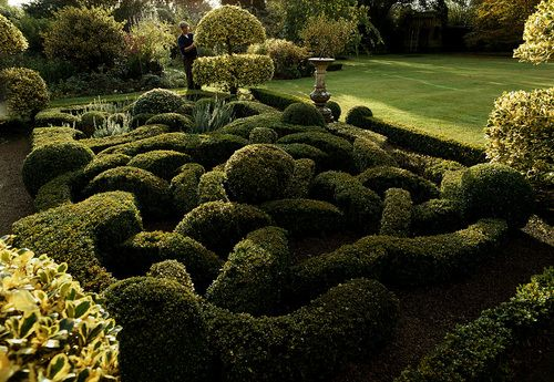 Pin By Jan Wilson On Topiary Garden Hedges Barnsley Garden History