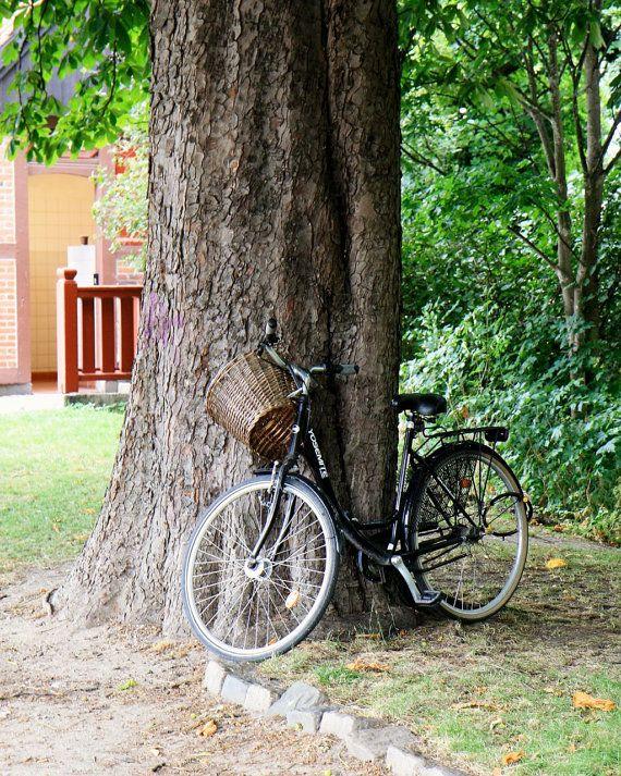 Bicycle Photography  Copenhagen Denmark Wall Art  by VitaNostra