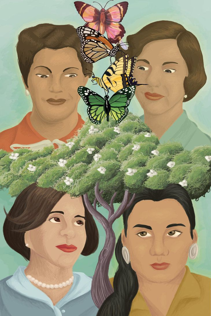 In the Time of the Butterflies by Julia Alvarez Study Guide ...