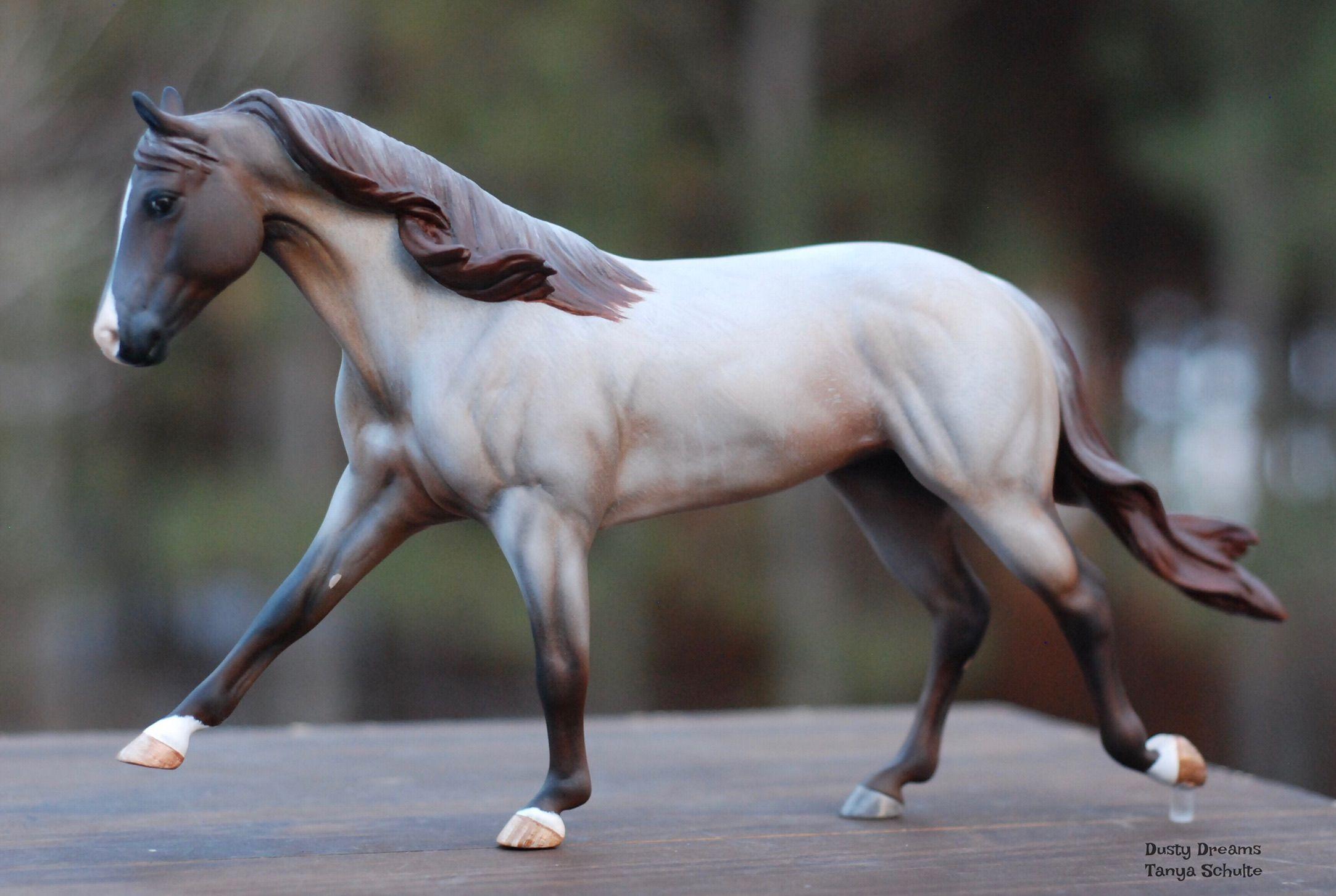 школах картинки лошадей брейер на природе того