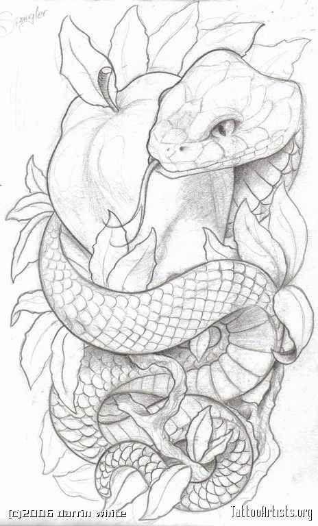 Nouvelles Dessin Serpent Tatouage De Pomme Idees Esquisses