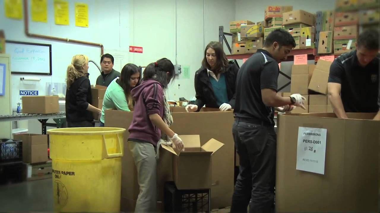 Pin on food bank volunteer videos