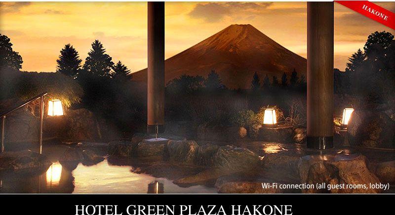 Hotel Green Plaza Hakone Day Trips From Tokyo Onsen Japan Onsen