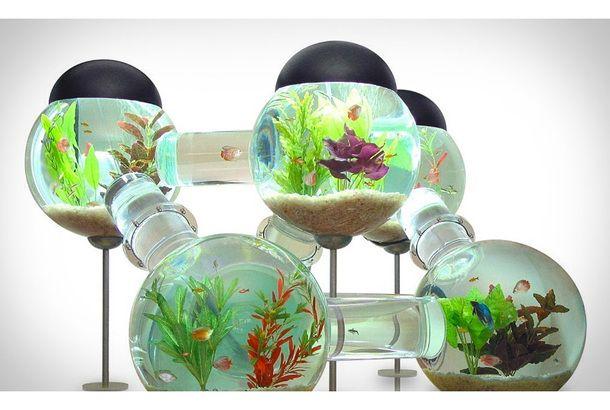 お魚ペット用のドリーム水槽がすごすぎる Roomie ルーミー 魚 クリエイティブなアイデア インテリア 家具
