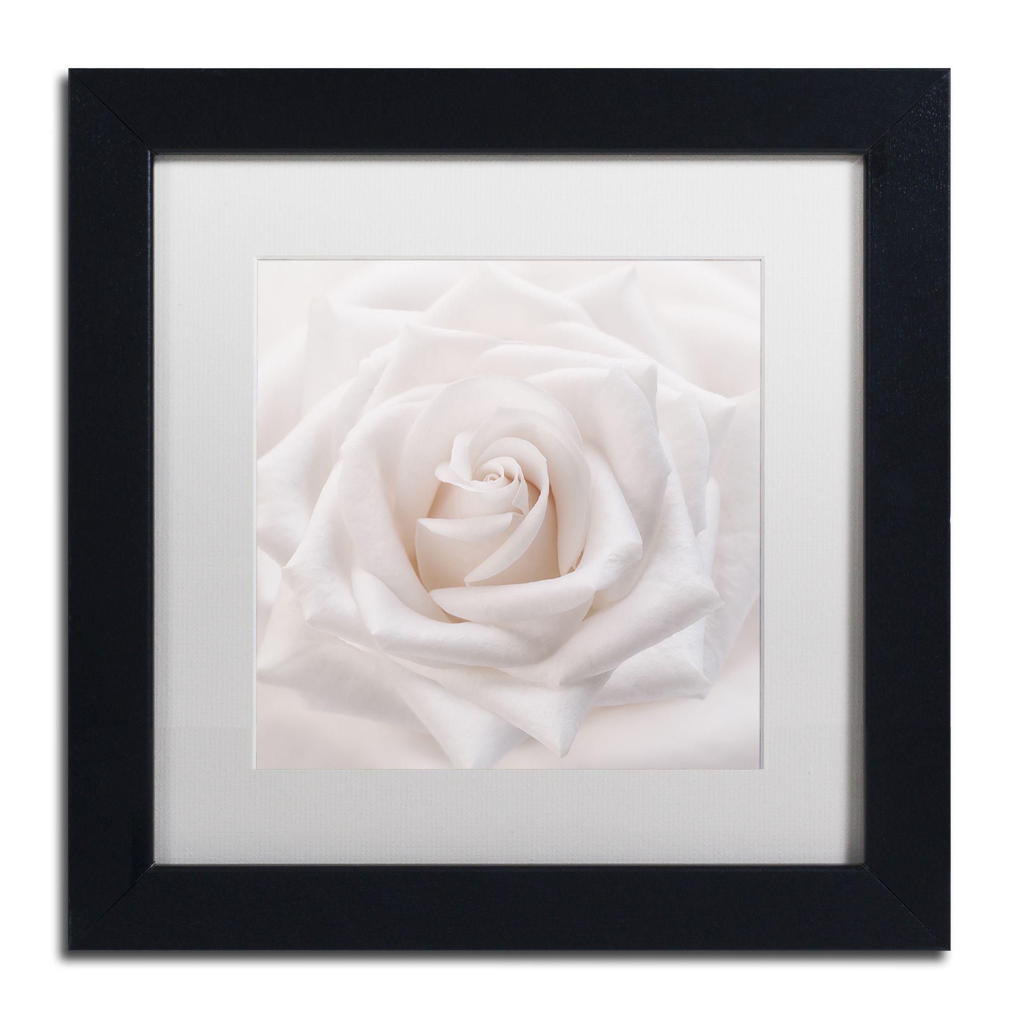 Cora Niele 'Soft White Rose' Matted Framed Art