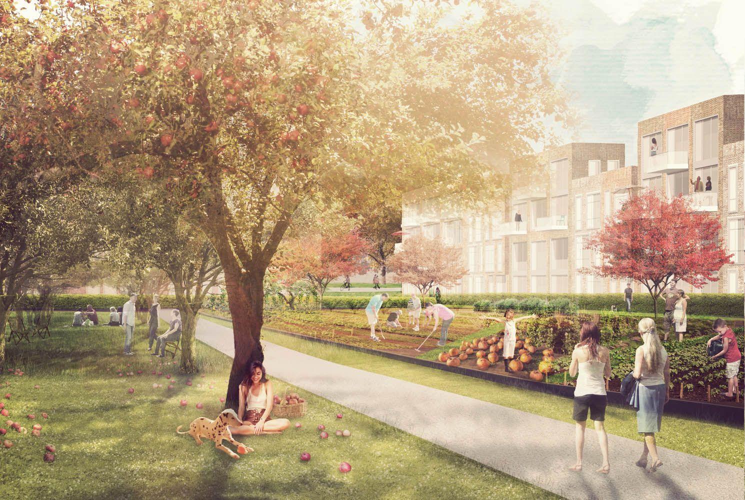 sinai perspektive hebebrandquartier outdoor landscape architecture st dtebau. Black Bedroom Furniture Sets. Home Design Ideas