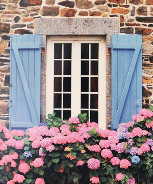window box + #shutters..ideas for cheering up front