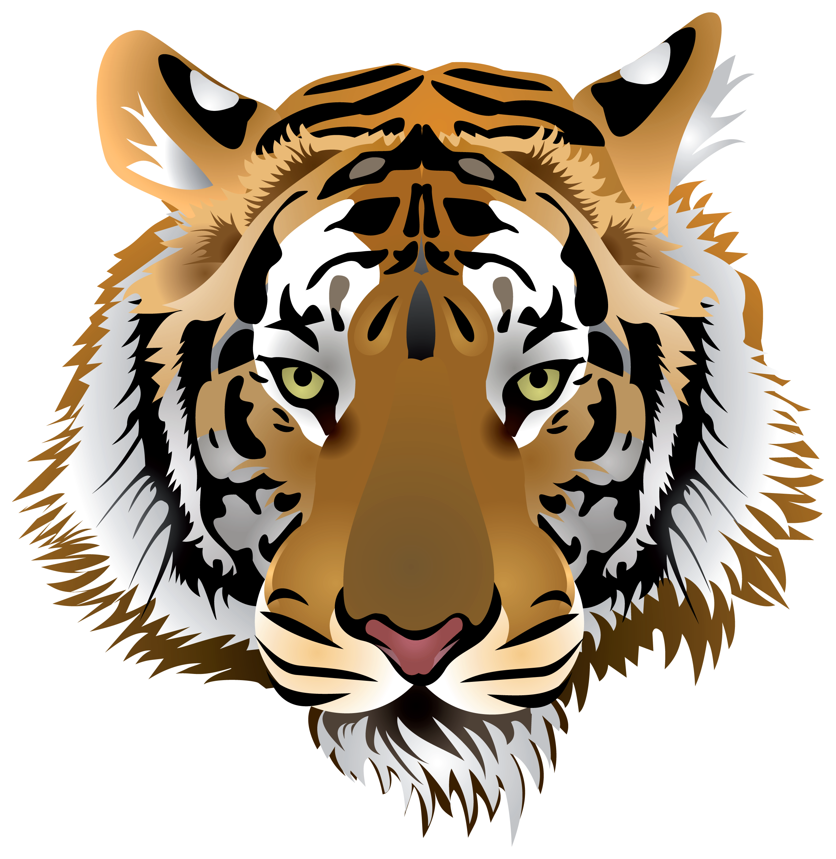Afficher L Image D Origine Tiger Images Tiger Art Tiger Face